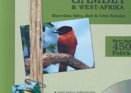 Vogelgids voor Gambia en West-Afrika | Univision