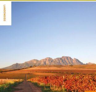 Reisgids Dominicus Zuid Afrika | Gottmer