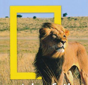 Reisgids National Geographic Zuid-Afrika | Kosmos