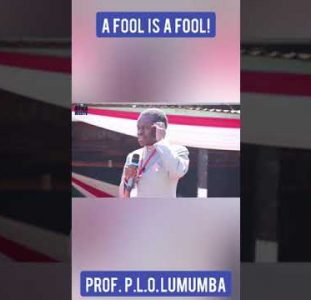 P.L.O. Lumumba – A Fool Is A Fool! #Shorts