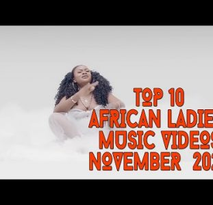 Top 10 African Music Videos Female Musicians | November 2020