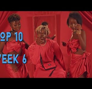 Top 10 New African Music Videos 7 February | 13 February 2021 (Week 6)