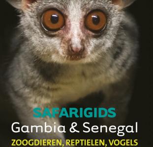 Natuurgids – Vogelgids Safarigids Gambia en Senegal | Afrika Safari