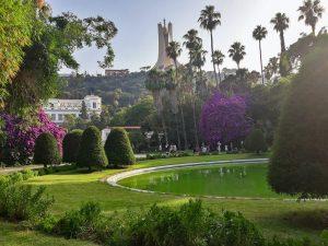 nasro-azaizia-Algiers, Algérie