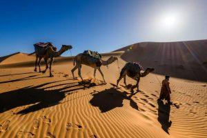 sergey-pesterev-Marrakesh, Morocco